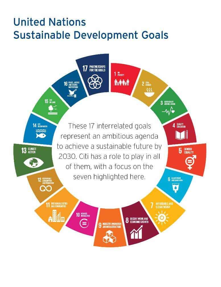 sustainable development goal by UNSDP