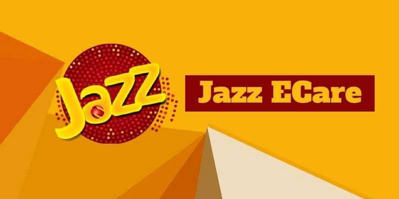 ecare-jazz-portal
